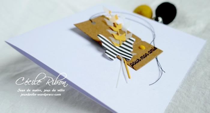 Carte CBBB38 - P1190065