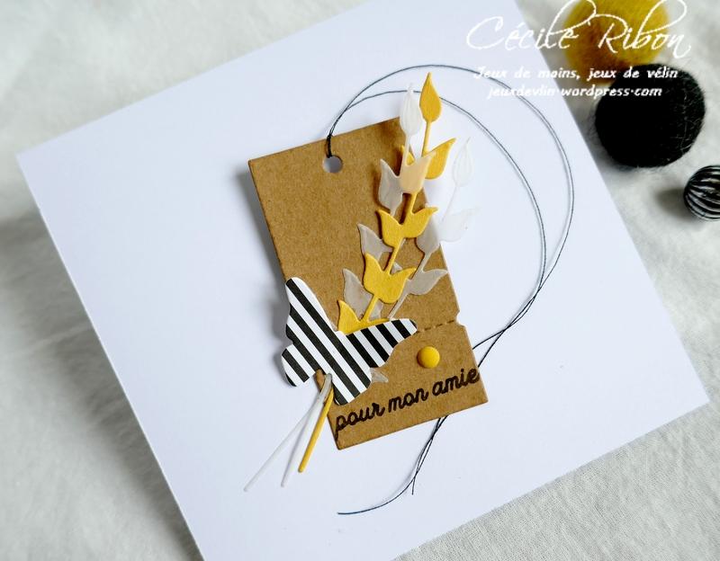 Carte CBBB38 - P1190070