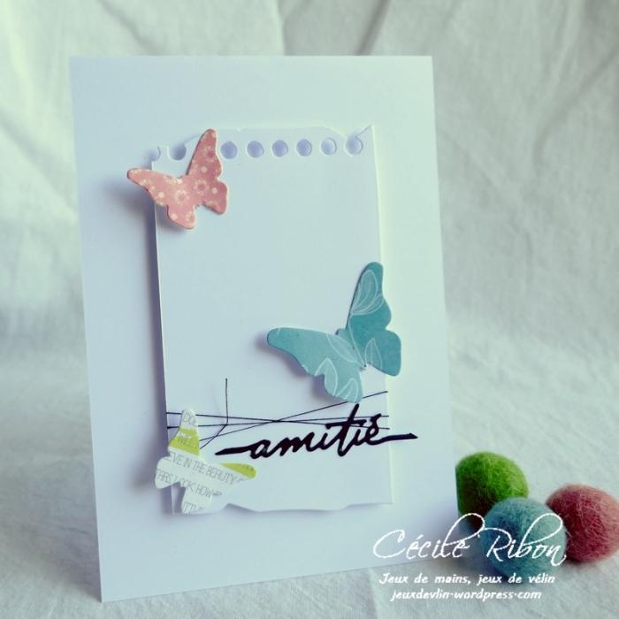 Carte CTS383 - P1180873