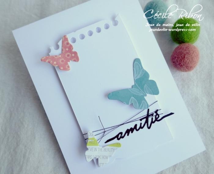 Carte CTS383 - P1180889