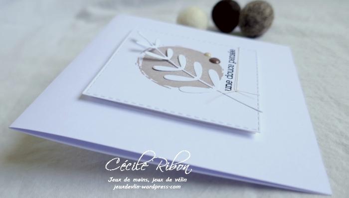 Carte JUGS550 - P1190117