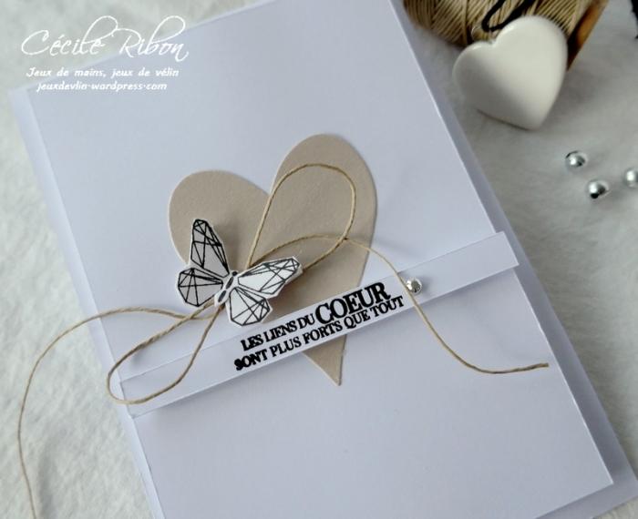 Carte Casology382 - P1190722