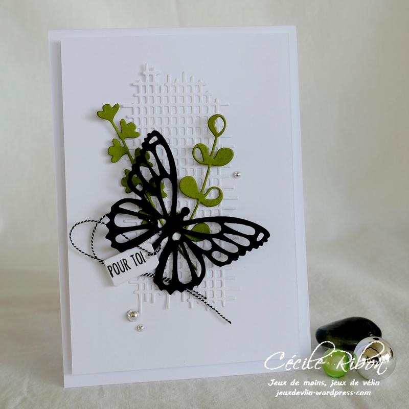 Carte CBBB45 - P1190573