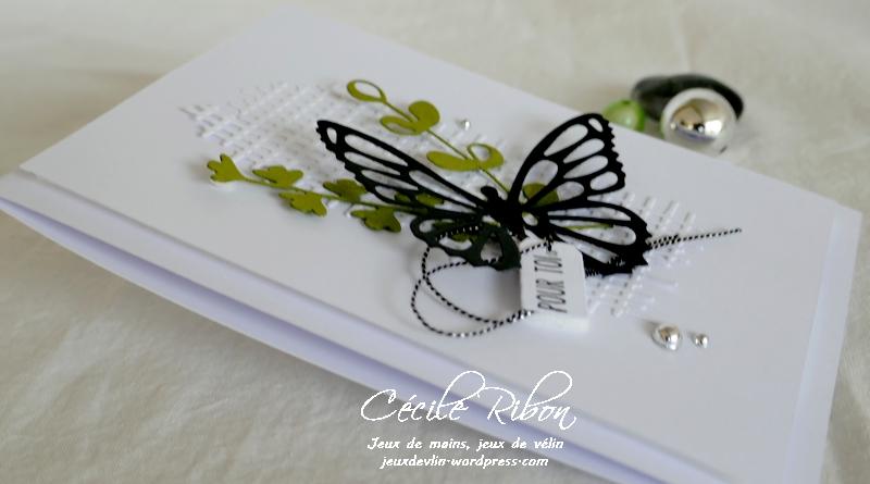 Carte CBBB45 - P1190582