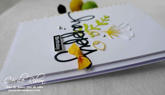 Carte AnnivF01 - P1200474
