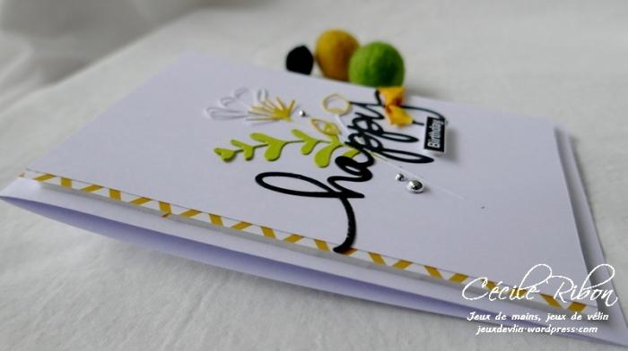 Carte AnnivF01 - P1200483