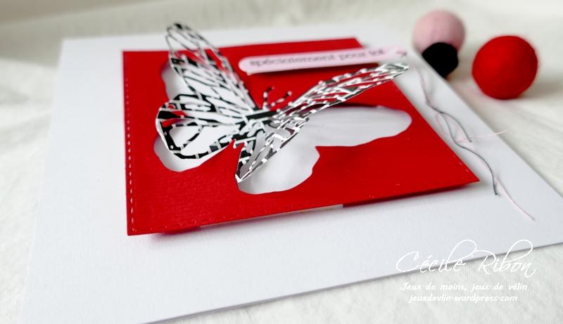 Carte CTD629 - P1200316