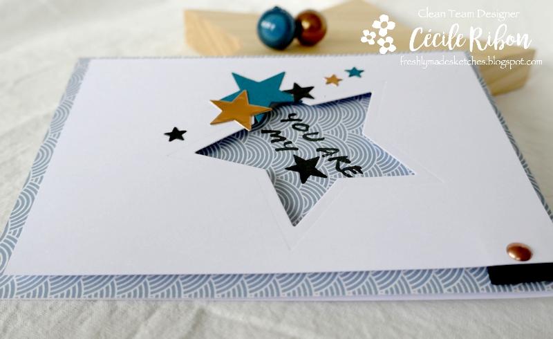 Carte FMS471 - P1190983