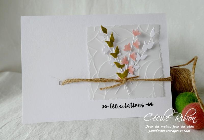 Carte FUSION57 - P1190940