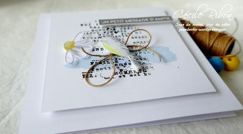 Carte LSFevBPioche - P1200703