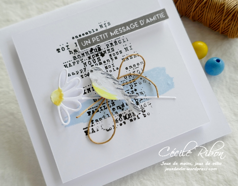 Carte LSFevBPioche - P1200714