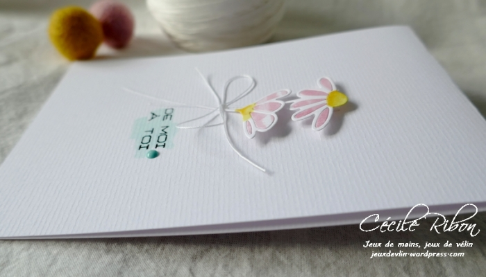 Carte LSFevCombo - P1200037