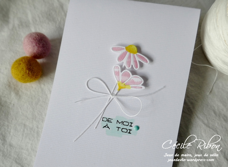 Carte LSFevCombo - P1200050
