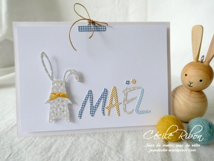 Carte Maël - P1200400