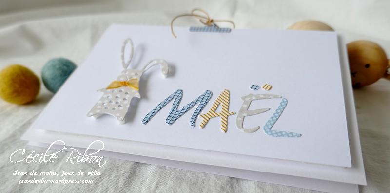 Carte Maël - P1200407
