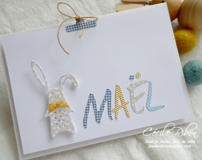 Carte Maël - P1200412
