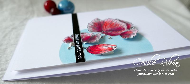 Carte CBBB49 - P1210367