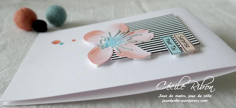 Carte FUSION61 - P1210728