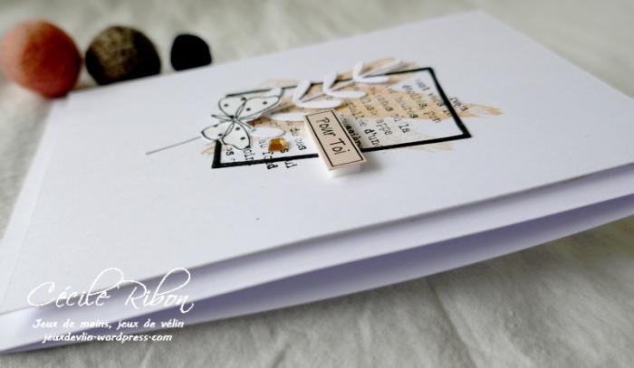 Carte LSMarsBPioche - P1210465