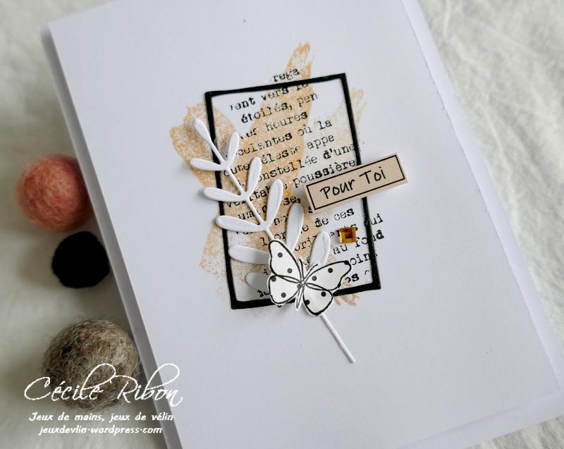 Carte LSMarsBPioche - P1210475