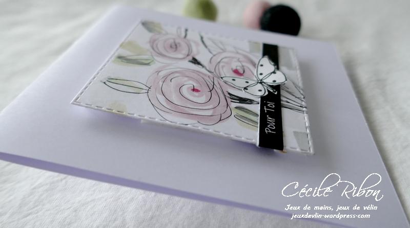 Carte LSMarsCombo2 - P1210069