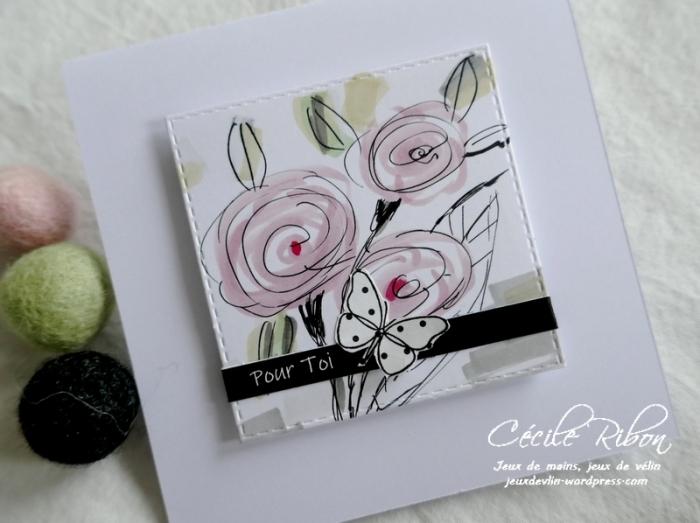 Carte LSMarsCombo2 - P1210081