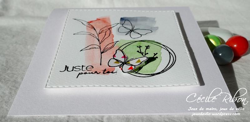 Carte LSMarsInspi - P1210881