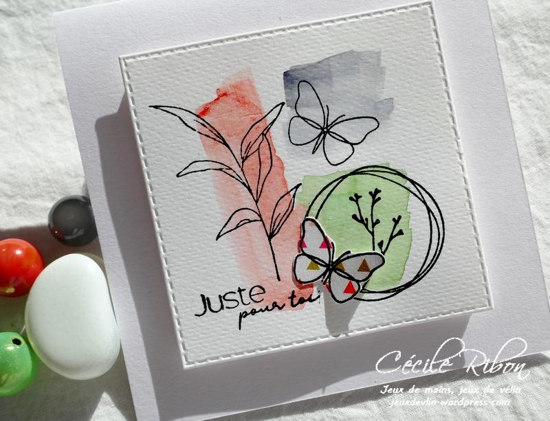Carte LSMarsInspi - P1210885