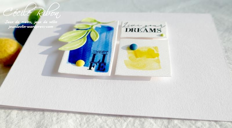 Carte CTD638#2 - P1220449