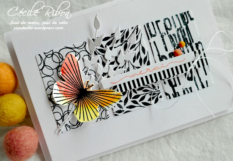 Carte LSAvrBPioche - P1220846