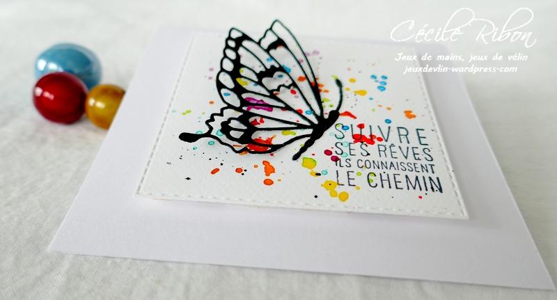Carte CBBB53 - P1230128