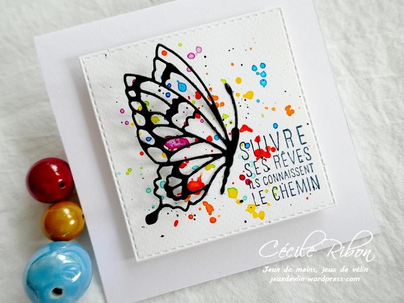 Carte CBBB53 - P1230138