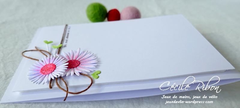 Carte CTD642 - P1230234