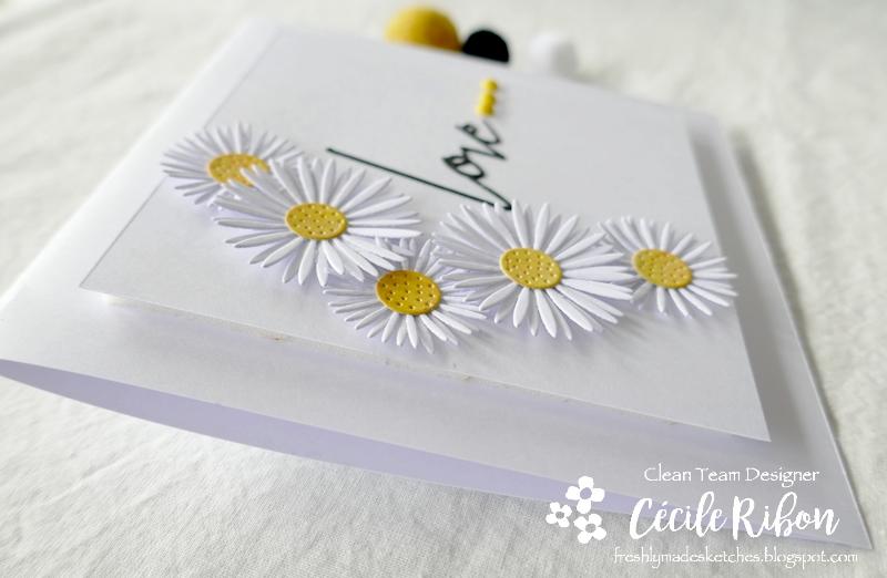 Carte FMS486 - P1230328