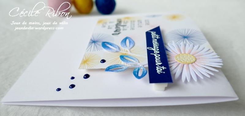 Carte LSMaiSketch - P1230571