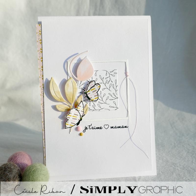 Carte SG01 - P1220572