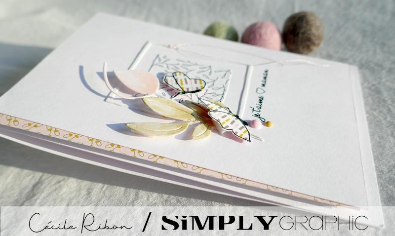 Carte SG01 - P1220578