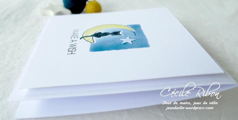 Carte JUGS590 - P1240672