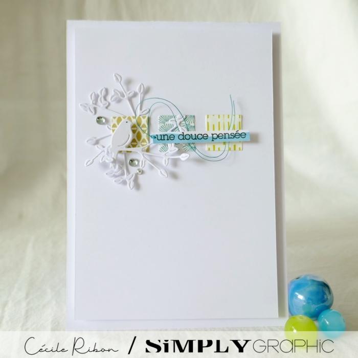 Carte SG02 - P1240136