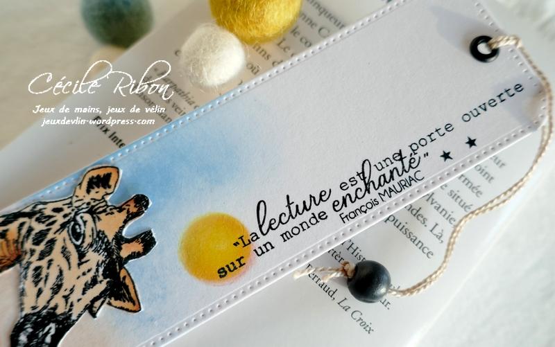 Carte CBBBJeuEtéS3 - P1250062
