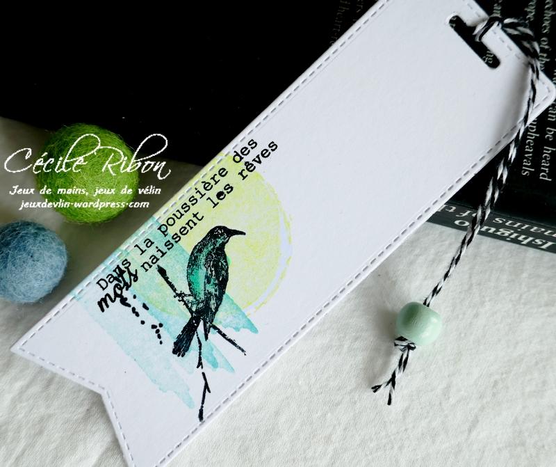 Carte JUGS595 - P1250318