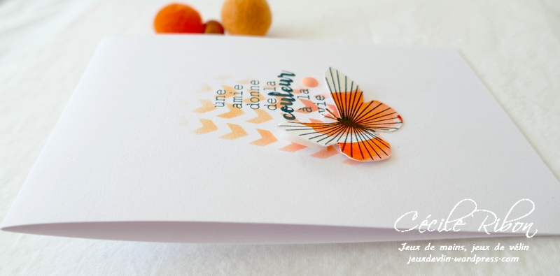 Carte LSMaiMBoard - P1230936