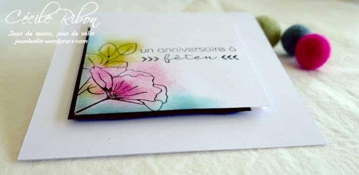 Carte AnnivF05 - P1250133