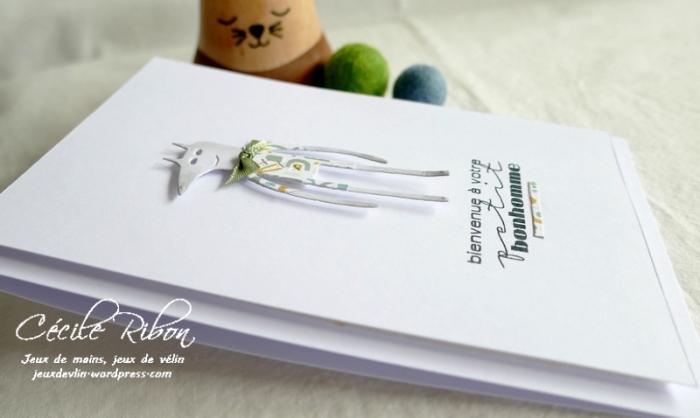Carte Naissance02 - P1250965