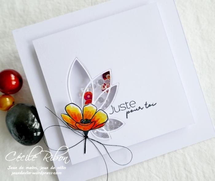 Carte PourToi03 - P1240549