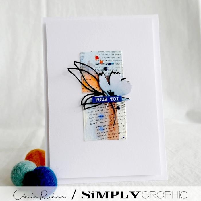 Carte SG04 - P1250457