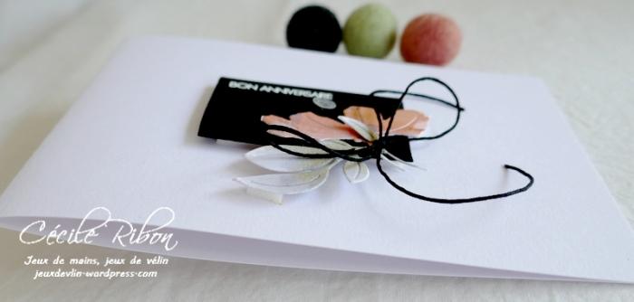 Carte AnnivF06 - P1250593