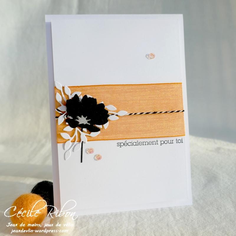 Carte CBBB58 - P1260610