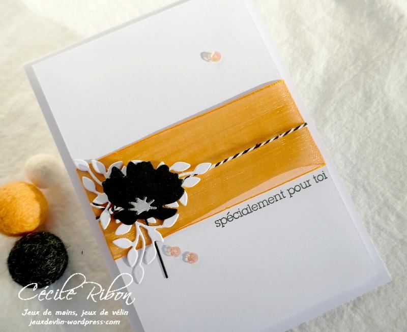 Carte CBBB58 - P1260622