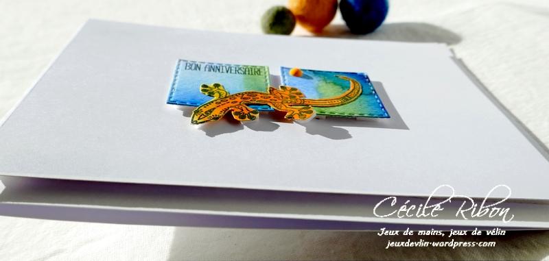 Carte CTD660 - P1260344